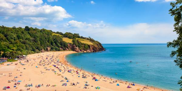 Beach in Devon